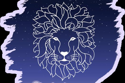 Lions Gate Sale